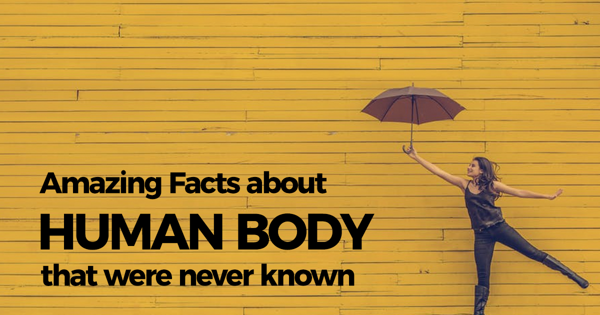 human body facts knowledgeride