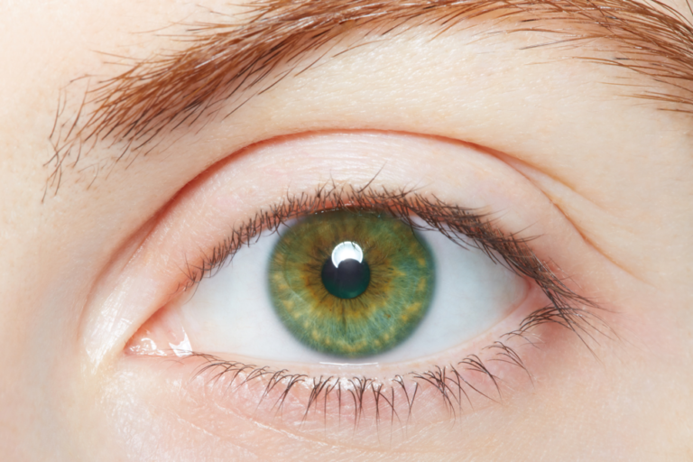Eyes facts green eyes knowledgeride